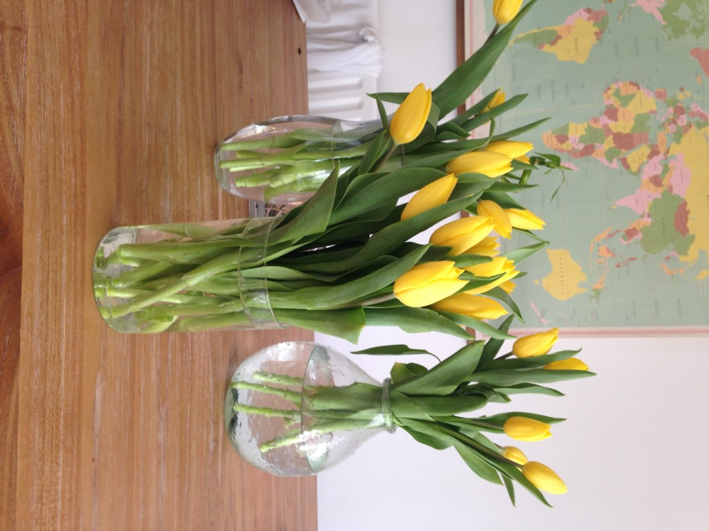 tesco tulips, Lovely yellow tulips form teasco flowers