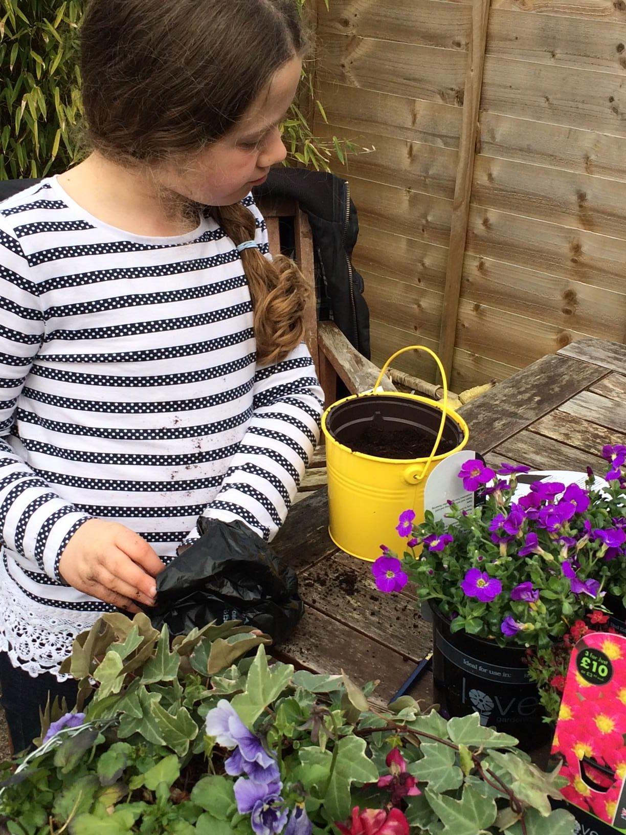 lise-garden